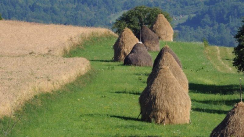 APIA: Ghidul fermierului privind ecoconditionalitatea – 2018