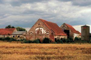 renovarea satelor