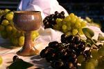 fonduri nerambursabile, vin