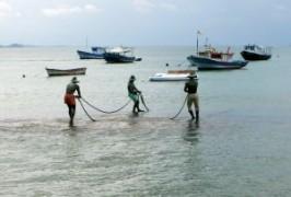 pescari.jpg