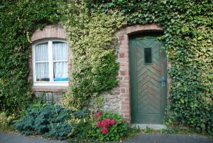 Noi programe finantate din Fondul pentru Mediu: Casa verde plus si Rabla plus