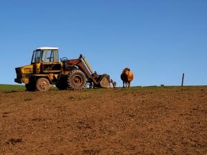 Finalizarea reformei funciare ar facilita accesul fermierilor la finantare