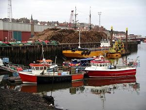 Se depun cererile de finantare pentru Masura I. 23 – Porturile de pescuit, locurile de debarcare, halele de licitatii si adaposturile