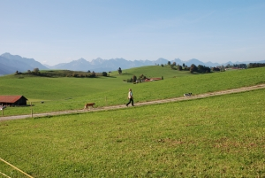 Bancpost sustine agricultorii si acorda finantarea necesara desfasurarii activitatii curente a beneficiarilor fondurilor APIA pe suprafata