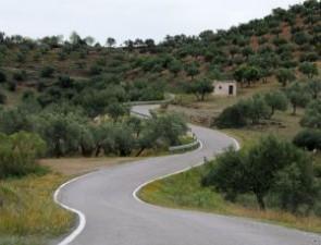 Primariile vor primi bani europeni pentru lucrarile de infrastructura