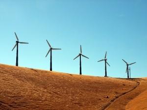 Guvernul va esalona subventia la energia regenerabila