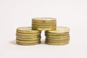 Guvernul suplimenteaza fondurile pentru bunastarea pasarilor