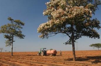 APIA: Peste 735.000 de fermieri si-au primit avansul din subventia pe suprafata; 902 milioane de euro, in conturile fermierilor