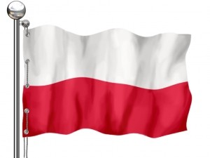 Propunere de parteneriat din Polonia – componenta Implicare democratica si participare civica a programului Europa pentru cetateni