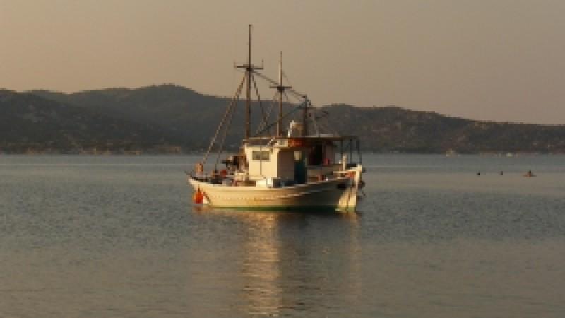 A fost publicată a doua versiune a Programului pentru Acvacultură și Pescuit
