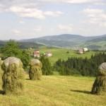 subventii-agricultura
