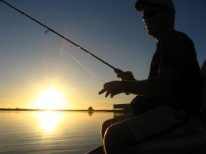 MADR: Stabilirea perioadelor și a zonelor de prohibiție a pescuitului, în anul 2019