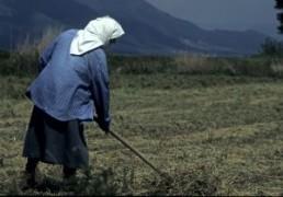 fermier_agricultura.jpg