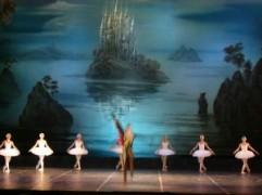 balerine.jpg