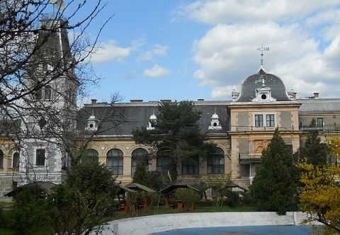 Castel Macea Arad