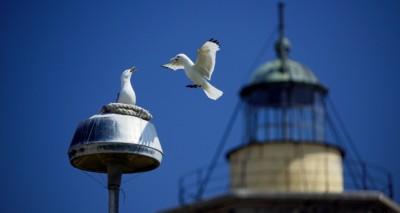 Municipalitatea Kungsbacka/Suedia cauta parteneri pentru schimb de experienta