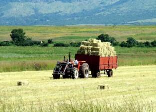 AFIR: Sistam depunerea de proiecte pe 6.1 – zona non-montana – deoarece bugetul alocat a fost epuizat