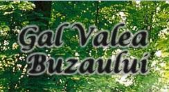 GAL Valea Buzaului a lansat un apel de proiecte pentru 7 masuri din PNDR
