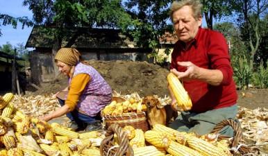 Comisia Europeana a lansat o consultare publica privind rolul agriculturii familiale