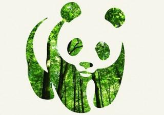 Organizatia ecologista WWF face observatii privitoare la Acordul de Parteneriat propus de Romania Comisiei Europene
