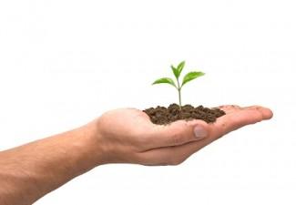 Cand se vor lansa programele nationale dedicate IMM-urilor