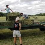 tineri_fermieri