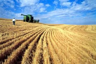 MADR: In 2015, pentru obtinerea subventiilor fermierii vor trebui sa depuna o singura cerere