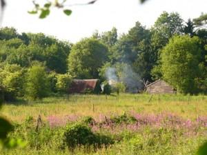 Legaturi rural – urban si factori de influenta a nivelului de trai