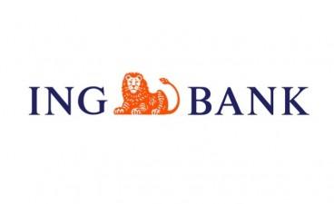 Granturi pentru ONG-uri de la ING Bank
