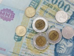 Aprecierea masiva a francului elvetian afecteaza si institutiile de stat