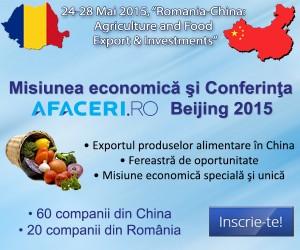 Imagine Misiune economica Beijing 600x500 px