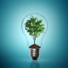 Fonduri pentru firme 2019: Premiu de 100.000 Euro în domeniul energiei verzi