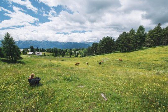 rural-agricultura.jpg