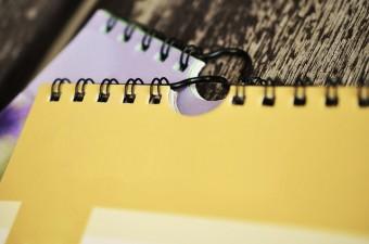 PNDR 2020: Se apropie termenele-limita pentru primele sesiuni de primire a proiectelor