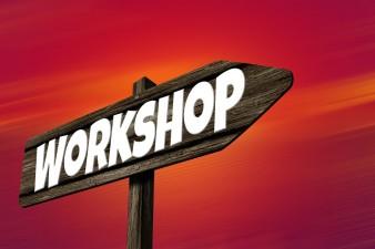 Workshop: Finantarea inovarii in domeniul agroalimentar folosind tehnologia informatiei