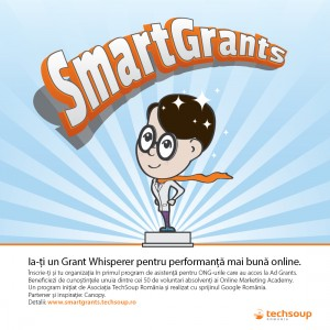 SmartGrants-visual