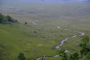 1,25 milioane lei pentru trei situri Natura2000