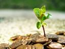 Jumătate din creditele acordate companiilor pot fi afectate de costurile produse de schimbările climatice – oficial BNR