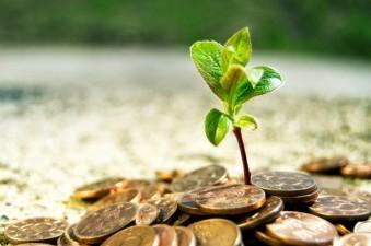 APIA autorizeaza plati de peste 875 de milioane de euro pentru un numar de 727.214 fermieri