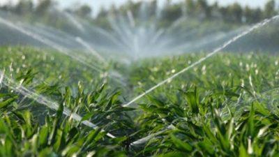 MADR a publicat in consultare schema de ajutor de minimis in agricultura in sectorul de irigatii