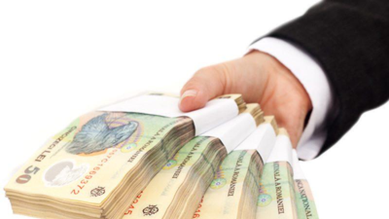 Ministrul Muncii: Subvențiide circa 1,8 milioane de lei pentru servicii sociale