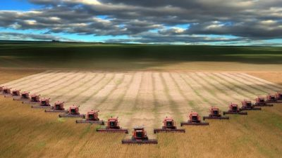 Ministerul Agriculturii: Strangem date in vederea unor eventuale ajutoare si scutiri de taxe pentru fermierii afectati de frigul din aprilie