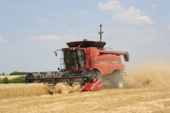 MADR: A fost recoltata 74,05% din suprafata insamantata cu orz la nivel national