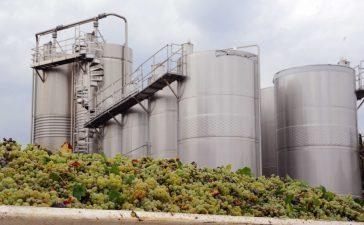 PNS: Noi masuri de investitii pentru sectorul vie-vin