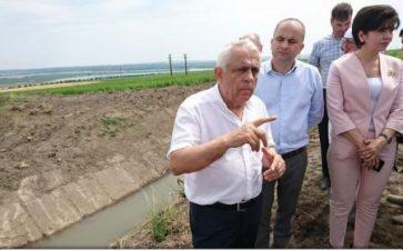 Petre Daea sustine ca pretul produselor agricole trebuie stabilit doar de piata