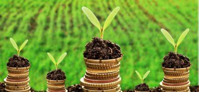 APIA: Stabilirea platilor pentru tinerii fermieri, precum si a plafoanelor aferente ajutoarelornationale tranzitorii in sectorul zootehnic pentru anul 2017