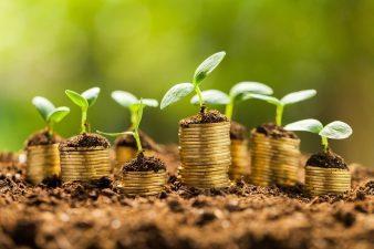 Beneficiarii PNDR care au depus cererile de plată în luna aprilie 2019 pentru proiecte de investiții urmează să încaseze banii solicitați