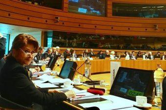 Ministrul Rovana Plumb: Romania sustine ferm mentinerea unui buget semnificativ pentru politica de coeziune post-2020
