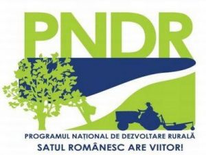 Beneficiarii publici ai PNDR 2020 pot opta pentru demararea procedurilor de achiziții înaintea încheierii contractului de finanțare cu AFIR