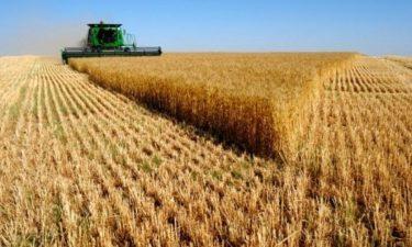 Fermierii din sectorul vegetal solicita ministrului Agriculturii sa sustina bugetul PAC 2021-2027 fara reduceri